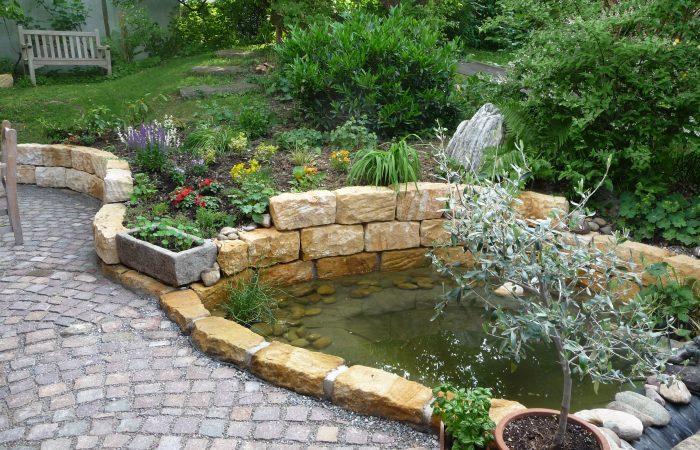 Der fertig angelegte und bepflanzte Teich